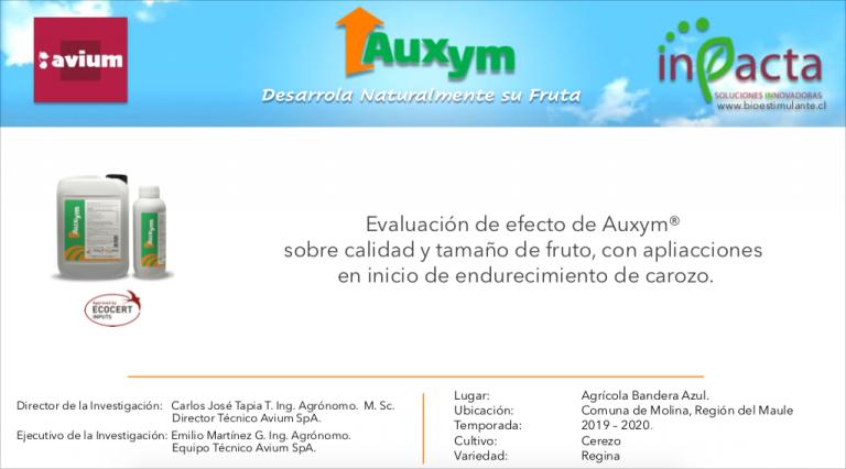Auxym Avium_PORTADA